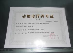 洛阳市首家拥有动物诊疗证的专业动物医院 涧西区