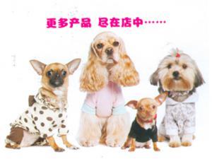 宠物服饰1