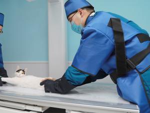 洛阳宠物医院5